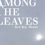 Sun Kil Moon Among the Leaves.jpg